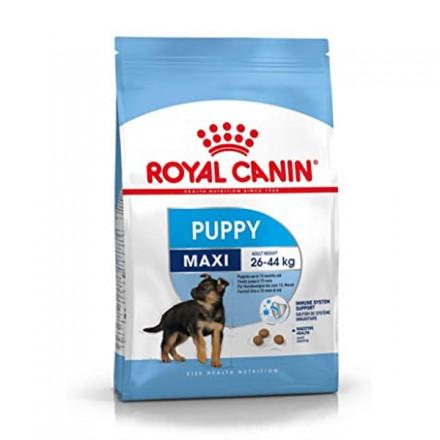 Royal Canin Cane Secco Maxi Puppy