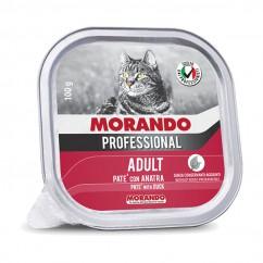Morando Miglior Gatto Umido...