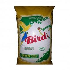 Bird Canapa Pelosella Piccola