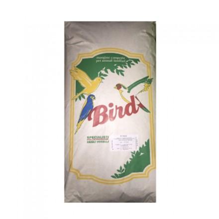 Bird Semi Della Salute Per Uccellini
