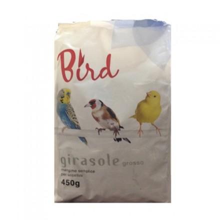Bird Girasole Grosso Per Uccellini