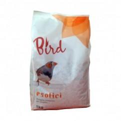 Bird Cibo Per Uccellini...
