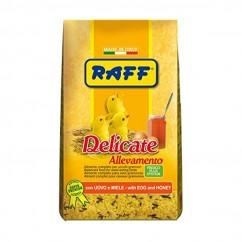 Raff Delicate Allevamento...