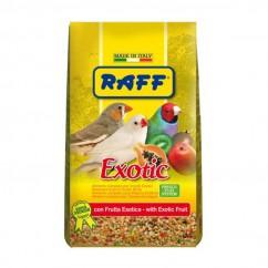 Raff Exotic Con Frutta...