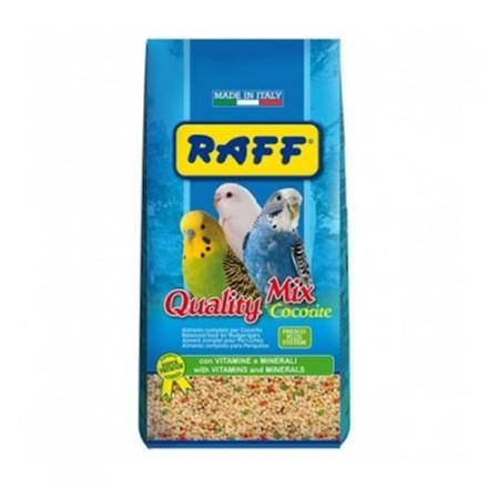 Raff Quality Mix Cocorite Con...