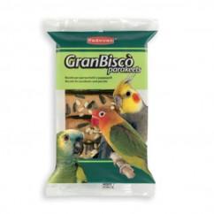 Padovan GranBiscò Parakeets...