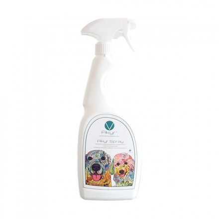 Akyr Disinfettante Spray Per Piccole...
